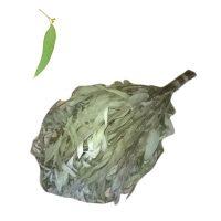 Eukaliptusz szauna virgács